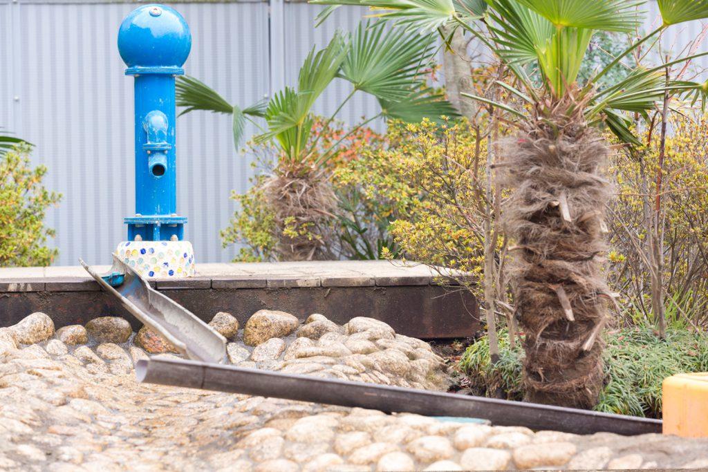神戸幼稚園 園庭のポンプと池